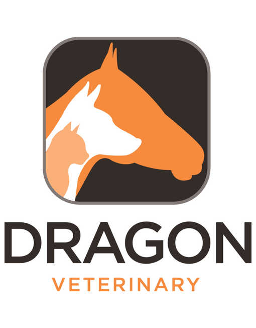 Dragon Veterinary Speech Recognition